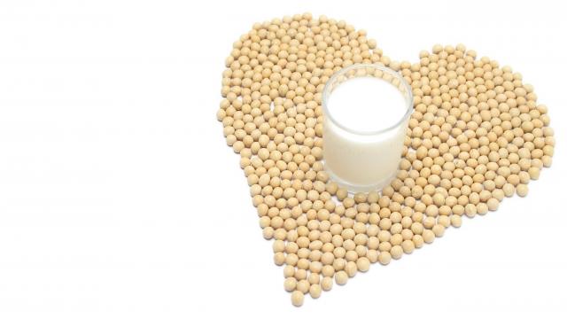 健康食品「大豆」のがん予防効果は実は賛否両論!摂取し過ぎには注意!