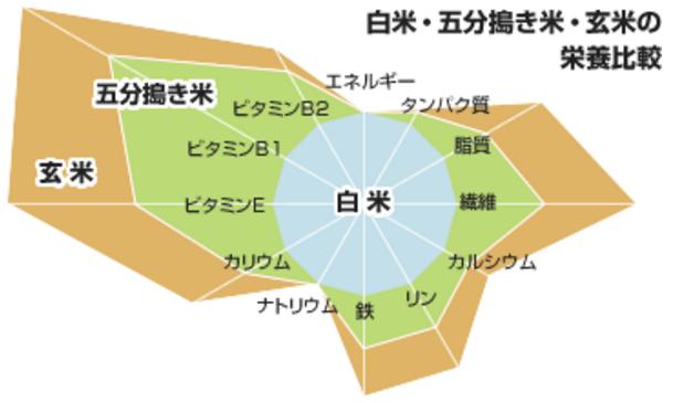 genmaihikaku