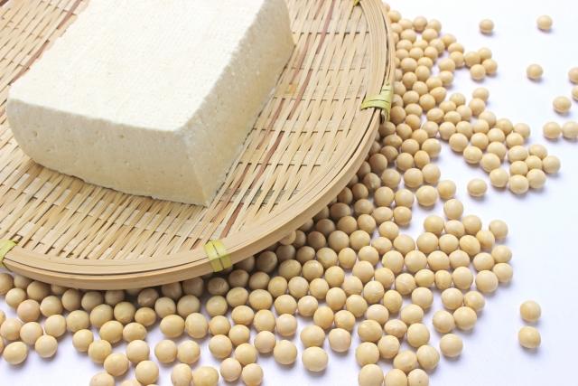 大豆のタンパク質「β-コングリシニン」で脂肪肝を予防するメカニズム